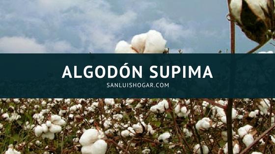 Algodón Supima